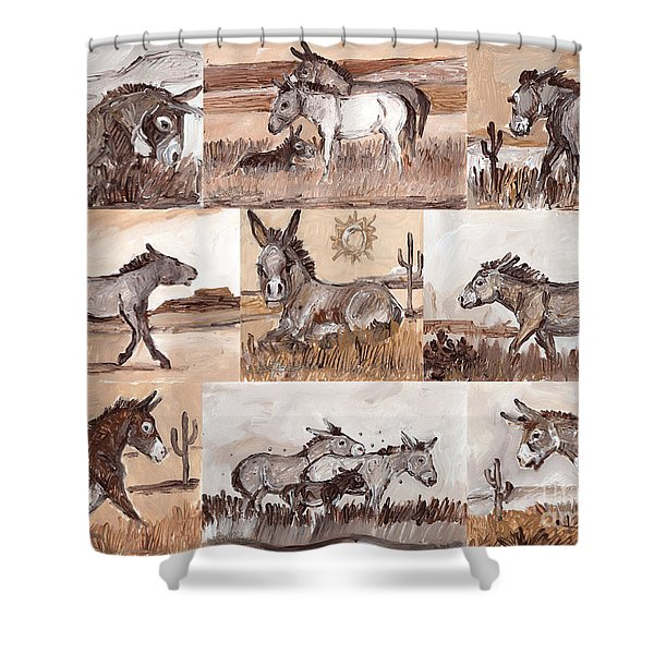 Burros Of The South West Sampler Shower Curtain