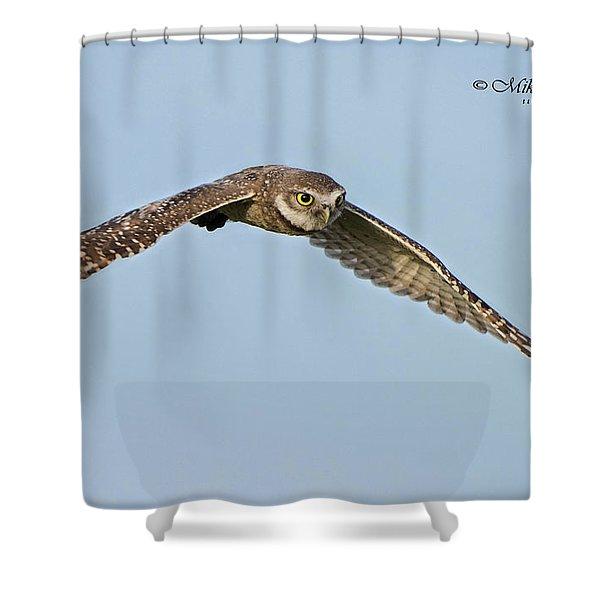 Burrowing Owl In Flight Shower Curtain