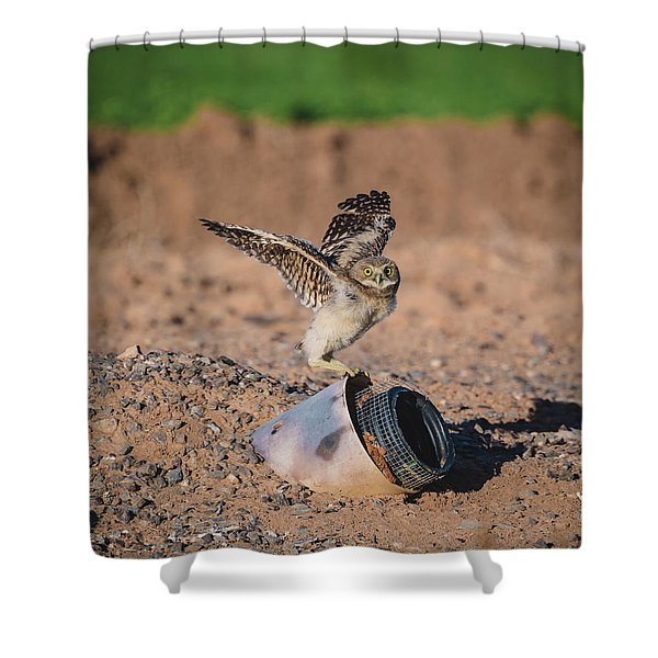 Burrowing Owlet Stretching His Wings Shower Curtain