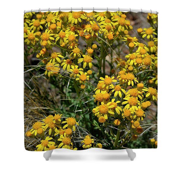 Burst Of Yellow Shower Curtain