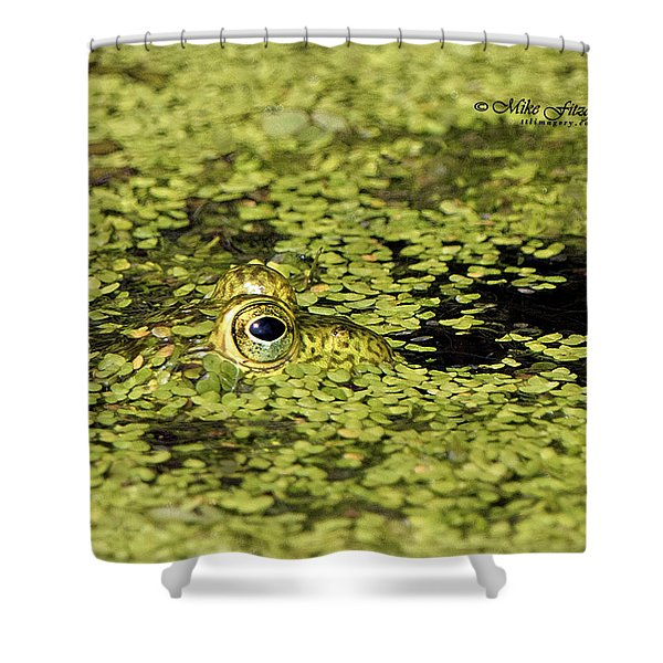 Buster In Camo Shower Curtain