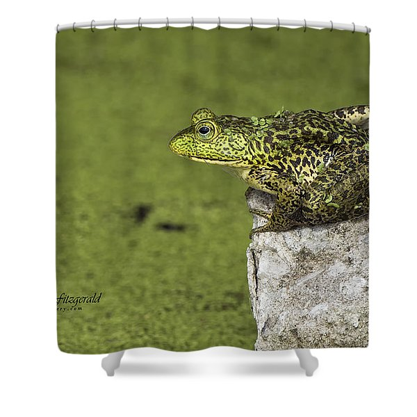 Buster On The Rocks Shower Curtain