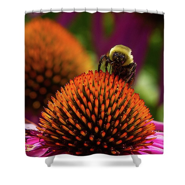 Busy As A ... Just Busy Shower Curtain