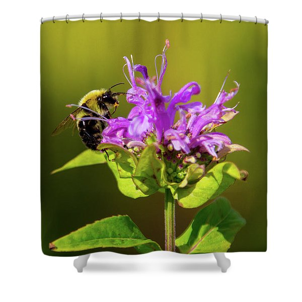 Busy As A Bee Shower Curtain