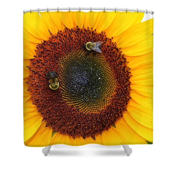 Busy Bees  Shower Curtain