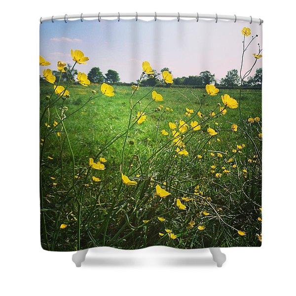 Buttercups Meadow Shower Curtain