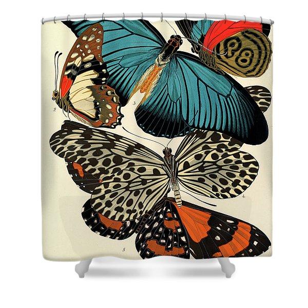 Butterflies, Plate-11 Shower Curtain