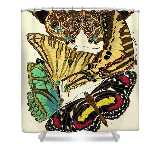 Butterflies, Plate-5 Shower Curtain