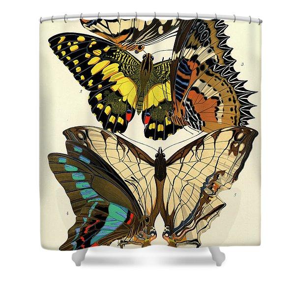 Butterflies, Plate-9  Shower Curtain