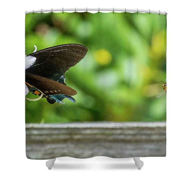 Butterfly And Bee Shower Curtain