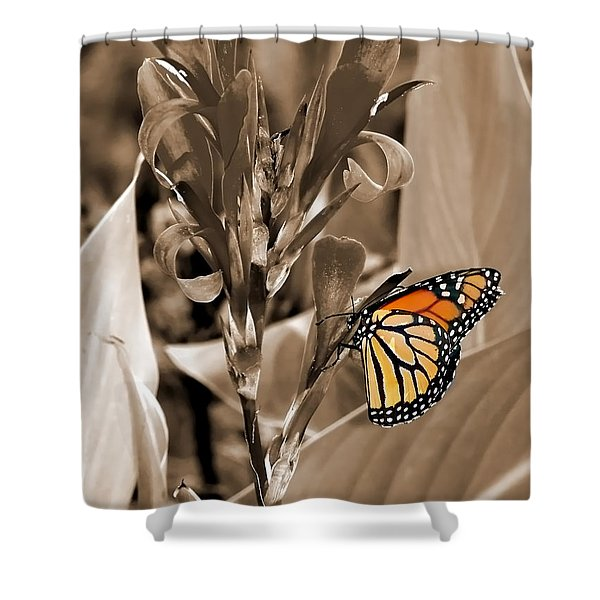 Butterfly In Sepia Shower Curtain