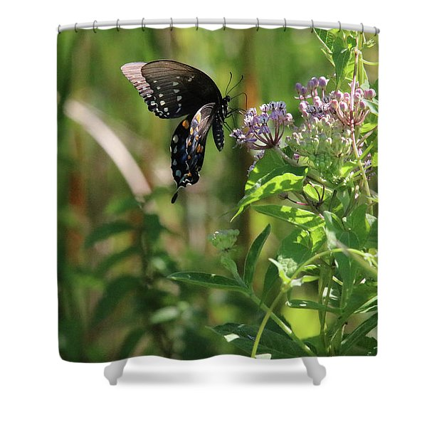 Butterfly In The Sun Shower Curtain