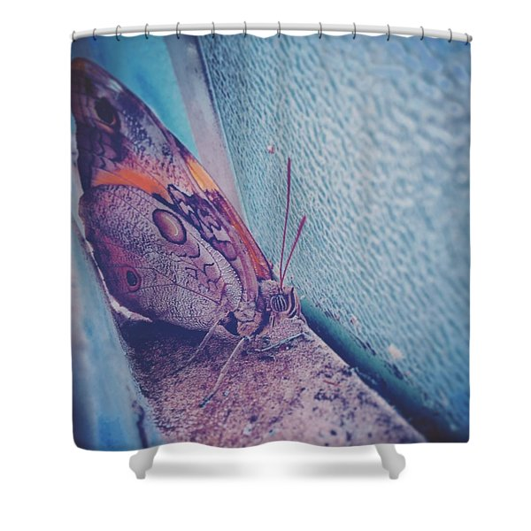 Butterfly Shower Curtain