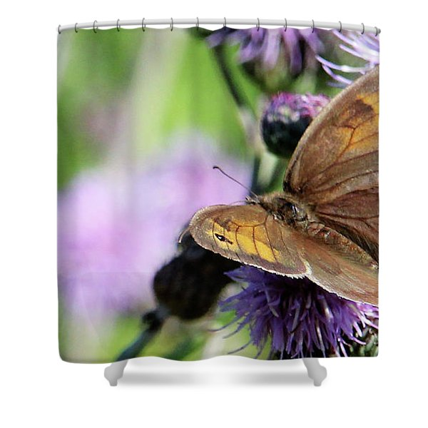 Butterfly Photograph  Shower Curtain
