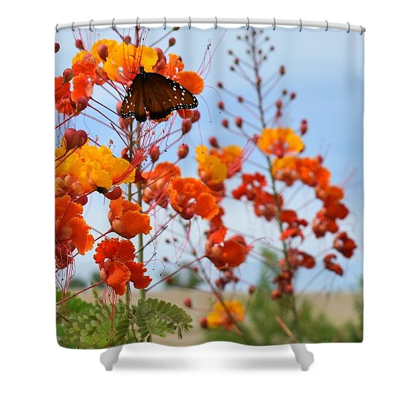 Butterfly On Bird Of Paradise Shower Curtain