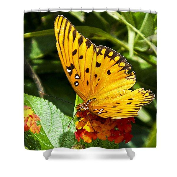 Butterfly On Lantana Shower Curtain