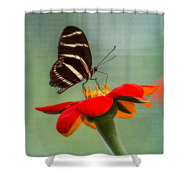 Butterfly Zebra Longwing On Zinnia Shower Curtain