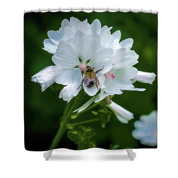 Buzz, Buzz, Buzz Went The  Bumble-bee Shower Curtain