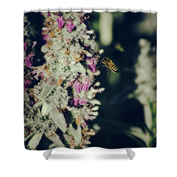 Shower Curtain featuring the photograph Buzzing In My Lamb's Ear by Jason Coward