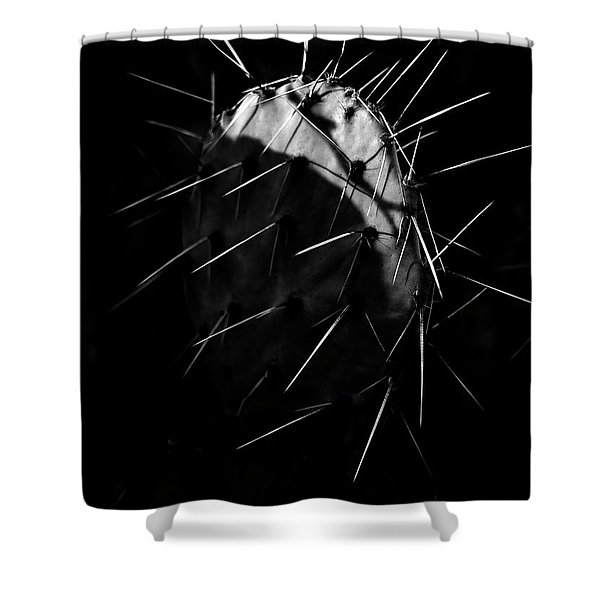 Bw Cactus Thorns Shower Curtain