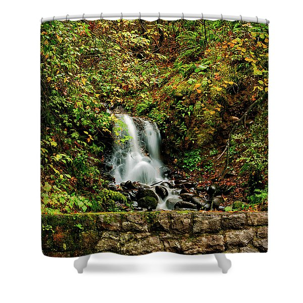 By The Side Of The Road Shower Curtain