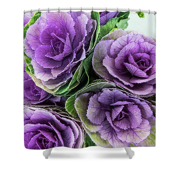 Cabbage Flower Shower Curtain