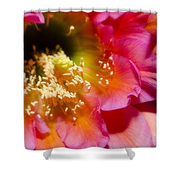 Cactus Flower Close Up Shower Curtain