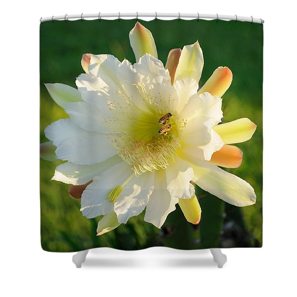 Cactus Flower With Bees Shower Curtain