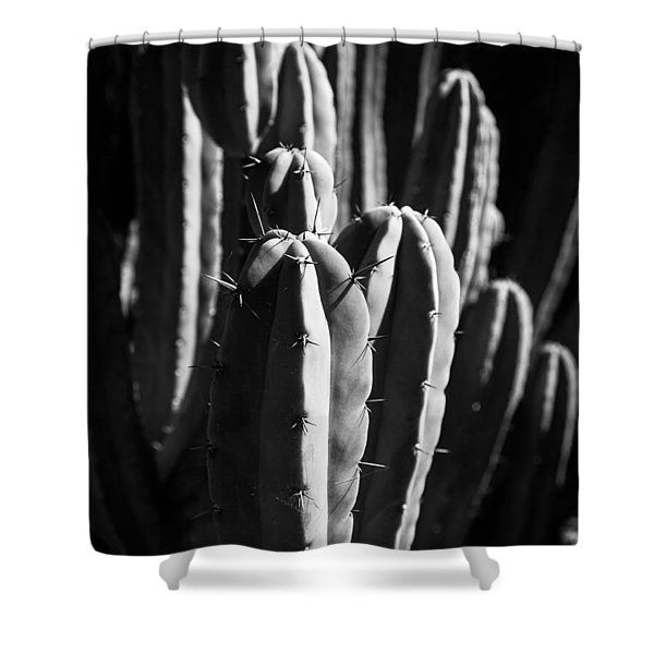 Cactus IIi Shower Curtain