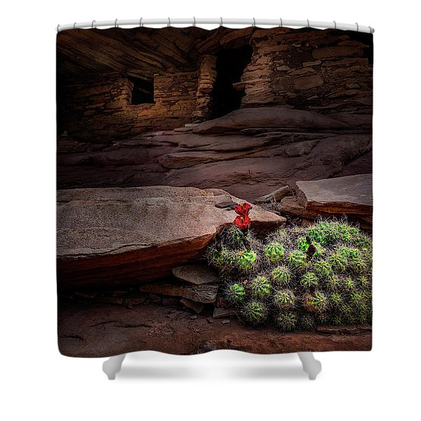 Cactus On Fire Shower Curtain