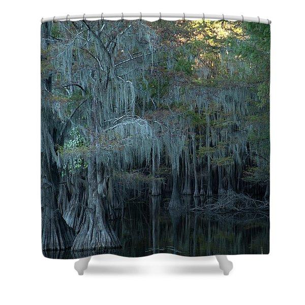 Caddo Lake #2 Shower Curtain