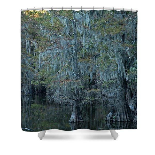 Caddo Lake #3 Shower Curtain