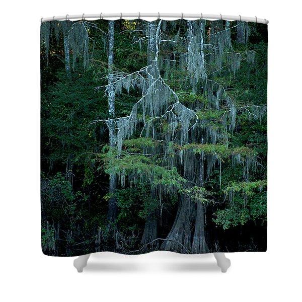 Caddo Lake #4 Shower Curtain