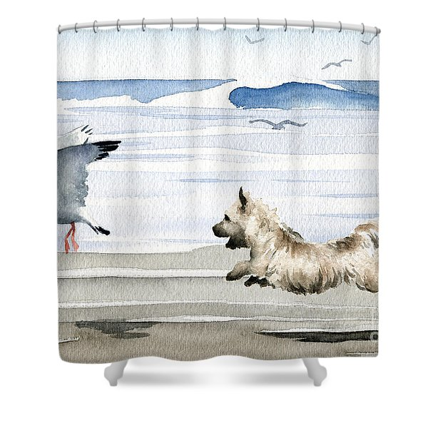 Cairn Terrier On The Beach Shower Curtain