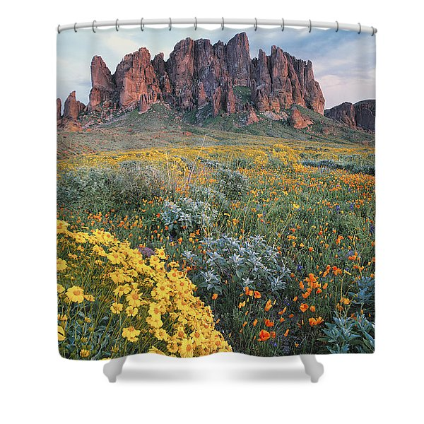 California Brittlebush Lost Dutchman Shower Curtain