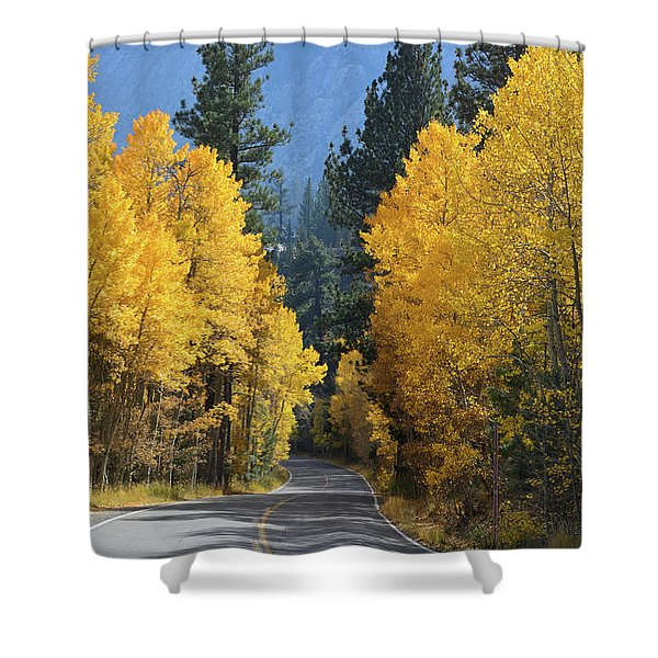 California Gold Shower Curtain