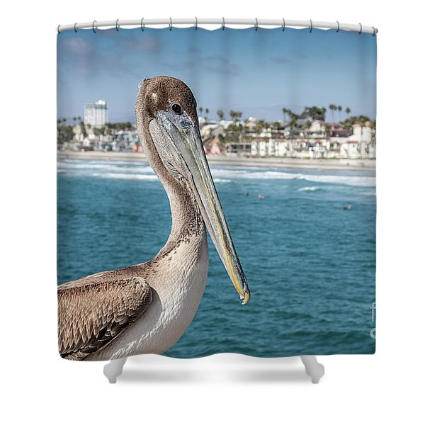 Shower Curtain featuring the photograph California Pelican by John Wadleigh