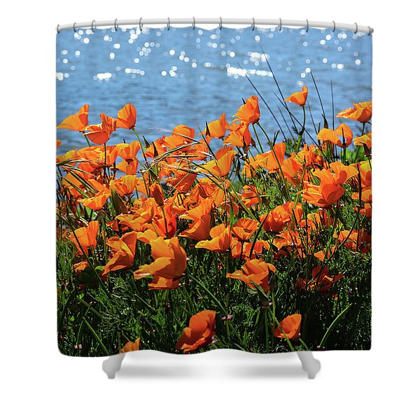 California Poppies By Richardson Bay Shower Curtain