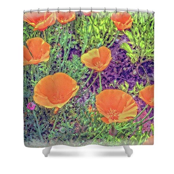 California Poppys Too Shower Curtain