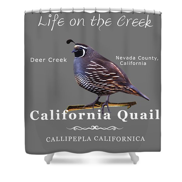 California Quail - Color Bird - White Text Shower Curtain