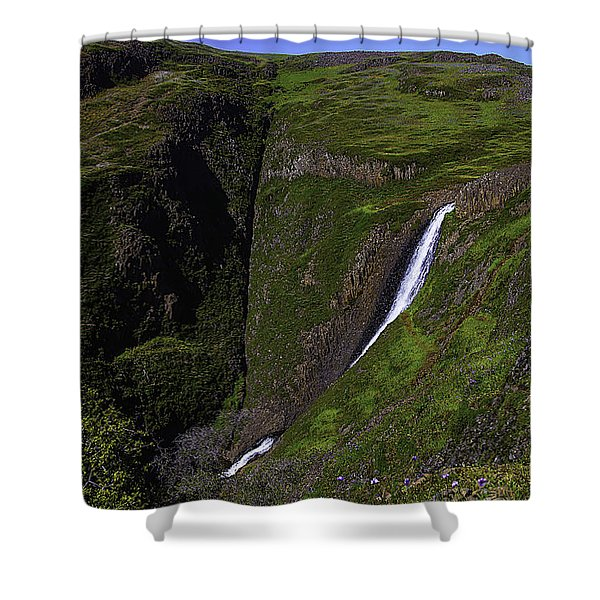 California Spring Falls Shower Curtain