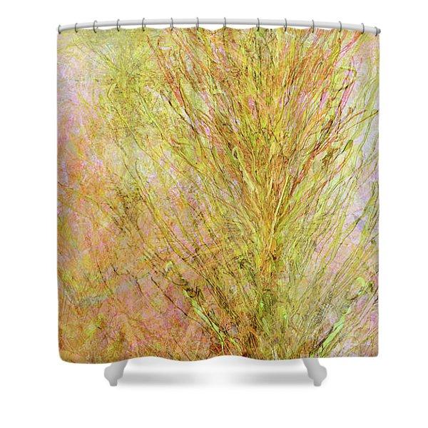 California Spring Shower Curtain