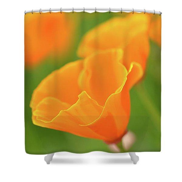 California Spring Poppy Macro Close Up Shower Curtain