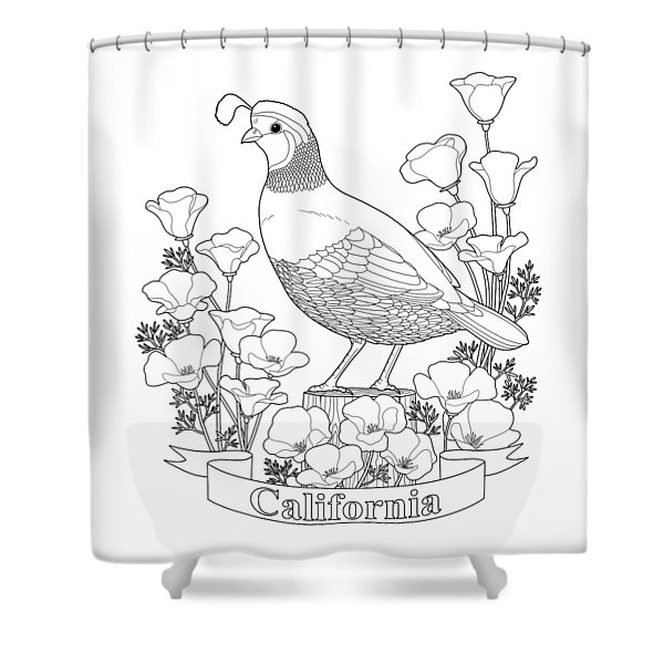 California State Bird And Flower Coloring Page Shower Curtain