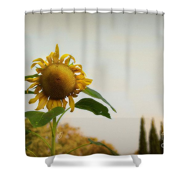 Californian Tuscany Shower Curtain