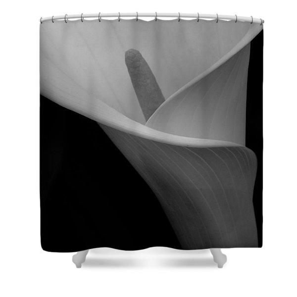 Calla Blossom Tight Crop Shower Curtain