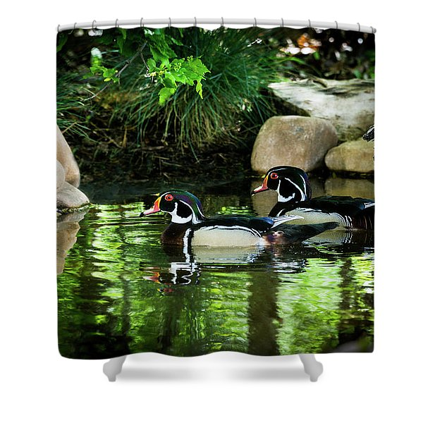 Calm Waters - Wood Ducks Shower Curtain