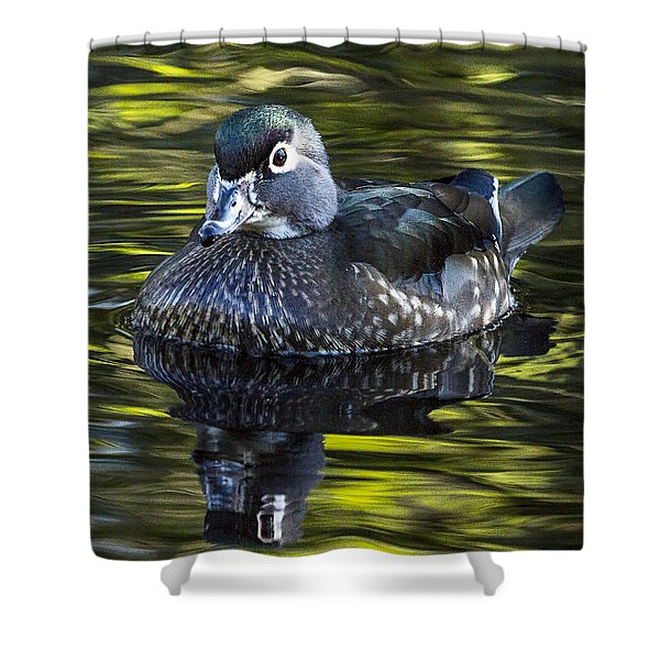 Calmness On The Water Shower Curtain