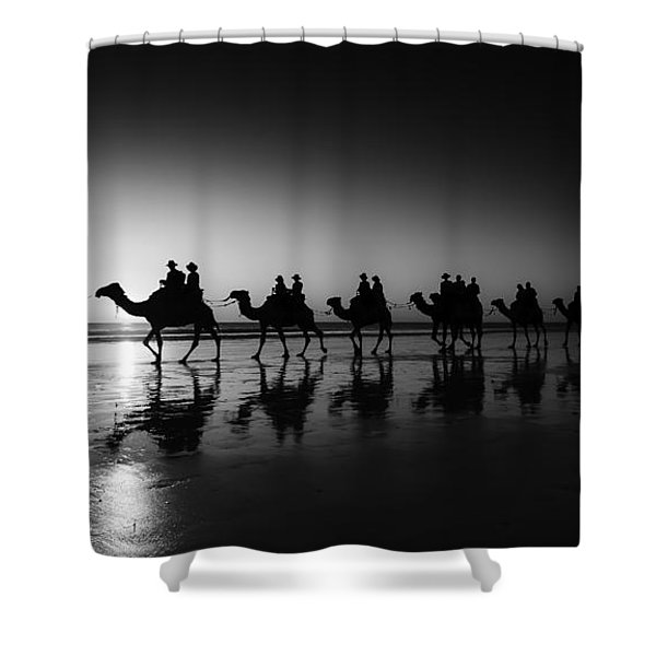 Camels On The Beach Shower Curtain