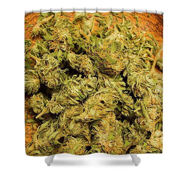 Cannabis Bowl Shower Curtain